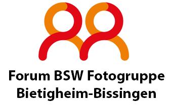 BSW-Mitglieder-Forum